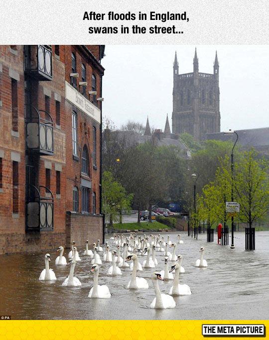 England Flooding Aftermath