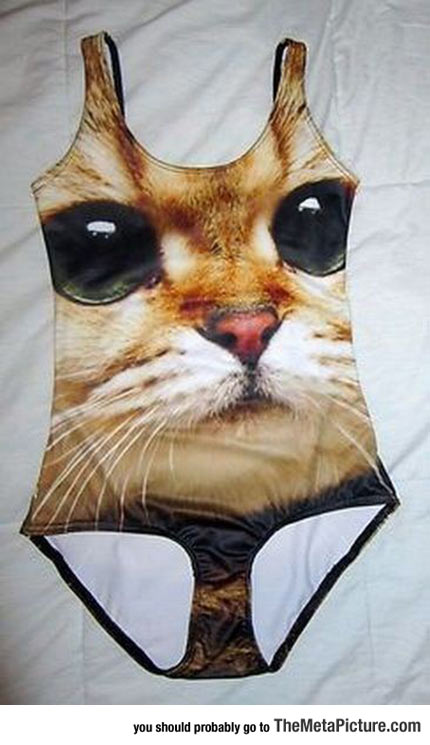 Now I Know What My Next Swimsuit Will Be