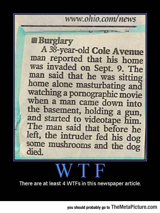 cool-weird-newspaper-story