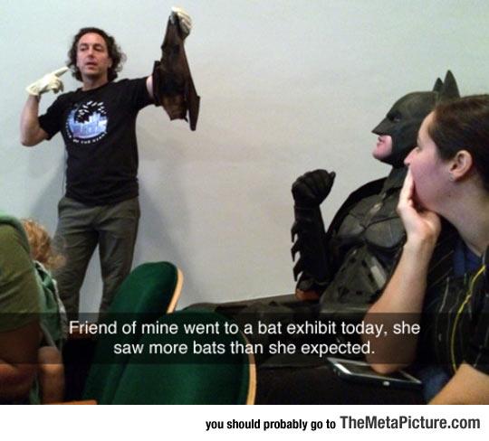 Bat Exhibit