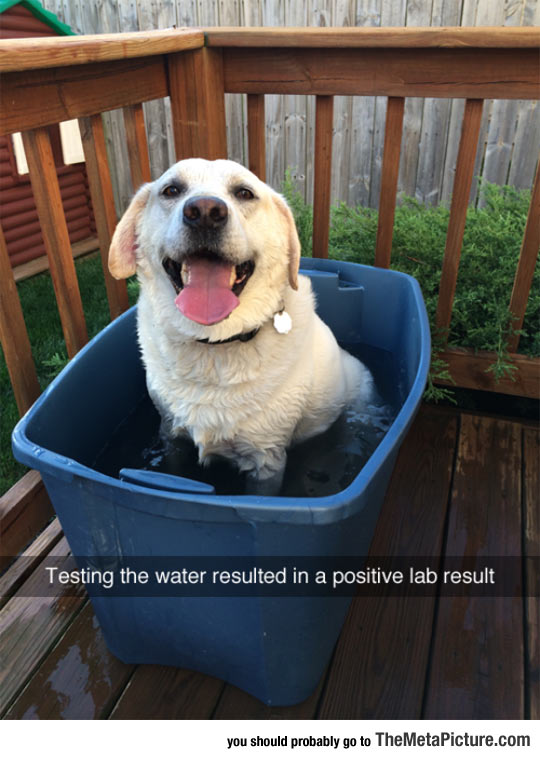 Testing The Water