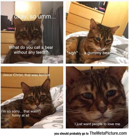 funny-sad-cat-face-disappointed