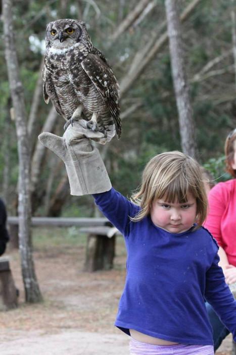 girl_holds_an_owl_01