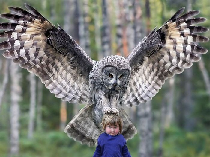 girl_holds_an_owl_06
