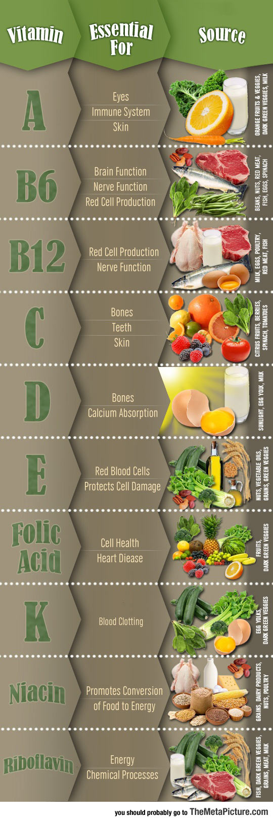 What Each Vitamin Is Good For
