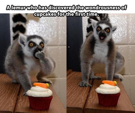 Eating A Cupcake For The First Time