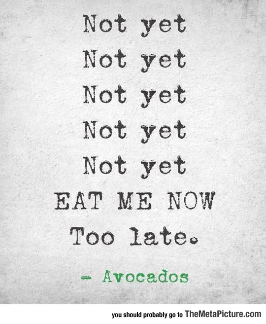 How I Feel About Avocados