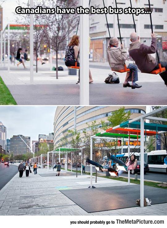 cool-Canadian-bus-stop-swings
