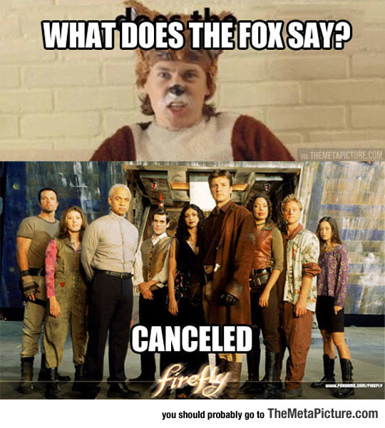 cool-Fox-Firefly-canceled