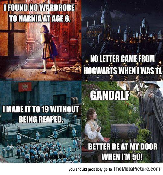 cool-Narnia-Hogwarts-Hunger-Games-Gandalf