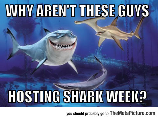 cool-Nemo-Shark-Week-hosting