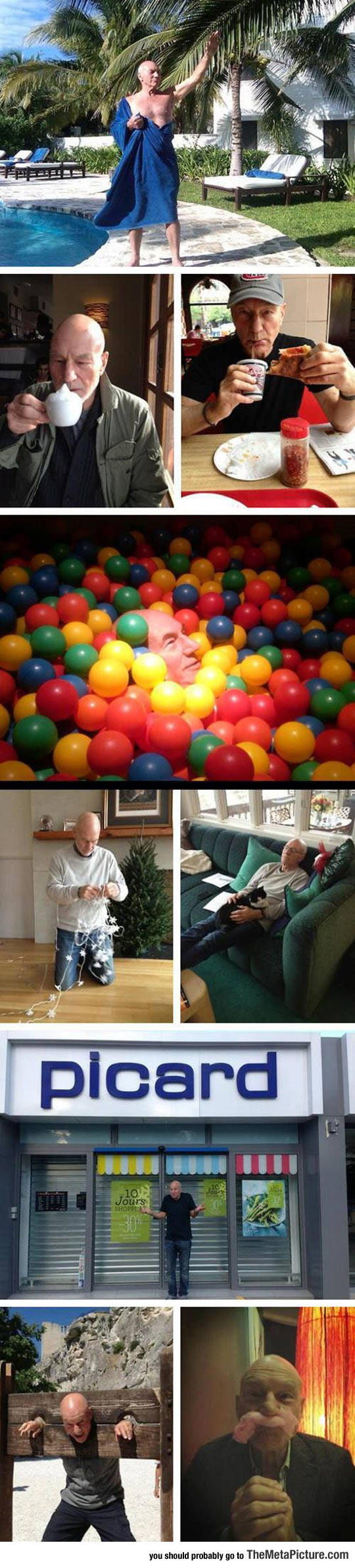 Just Patrick Stewart Doing What He Does Best