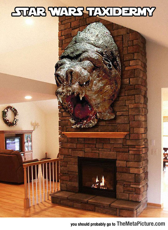 cool-Star-Wars-monster-taxidermy