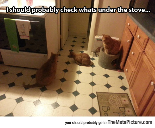 The Stove Mystery