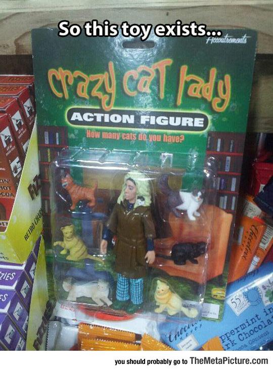cool-crazy-cat-lady-action-figure