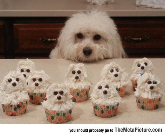 cool-dog-cupcakes-same