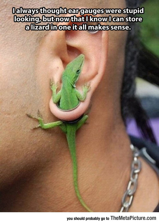 Ear Gauges Are Not So Bad After All