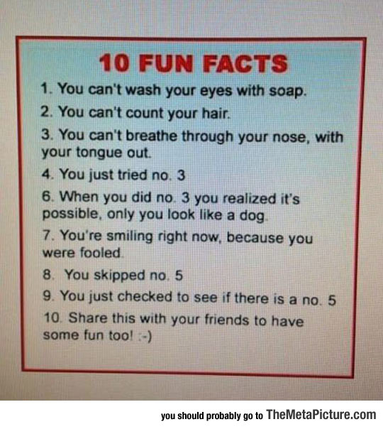 10 Fun Facts You Probably Didn