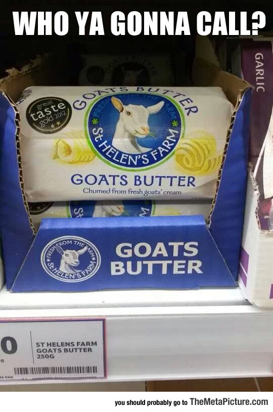 Well, Who You Gonna Call?