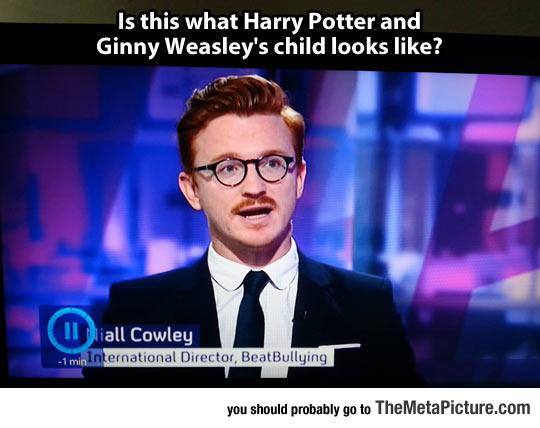 Probably Harry Potter
