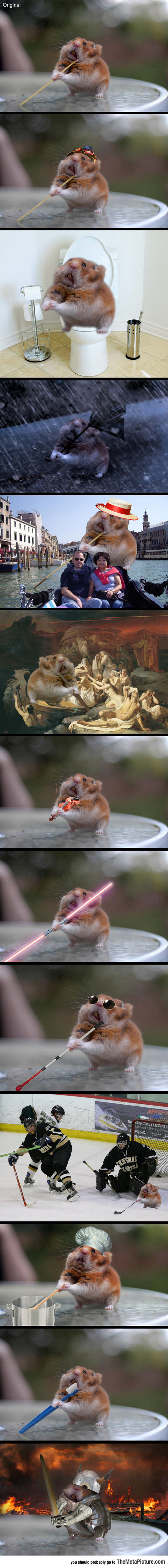 Just A Day In The Life Of Spaghetti Hamster
