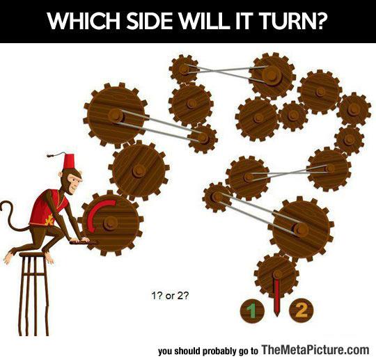 cool-monkey-wheels-side-turn