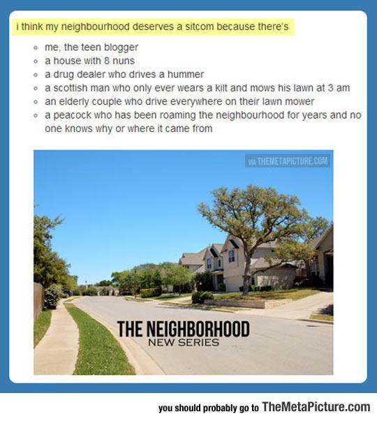 cool-neighborhood-sitcom-idea