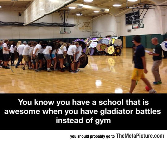 cool-school-gladiator-battles-gym