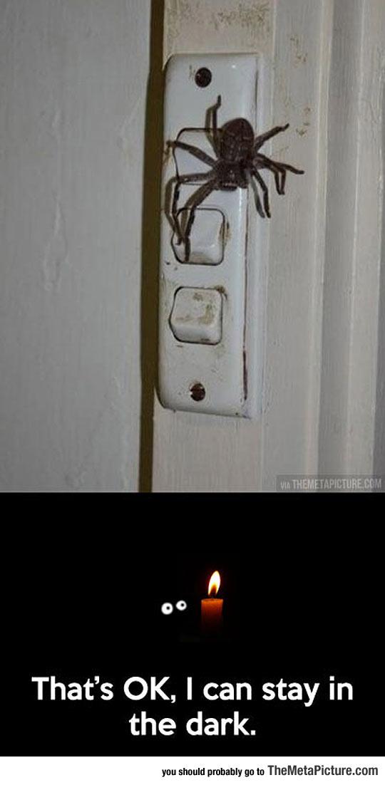 Who Needs Lights Anyway?