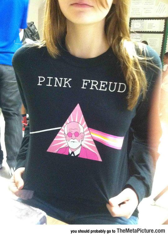 cool-sweatshirt-Pink-Floyd-Freud