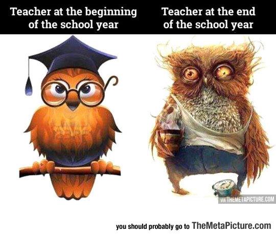 Life Of A High School Teacher