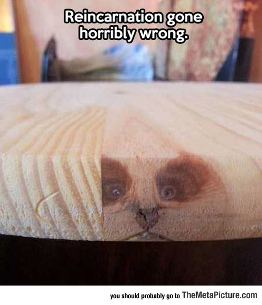 cool-wood-animal-face