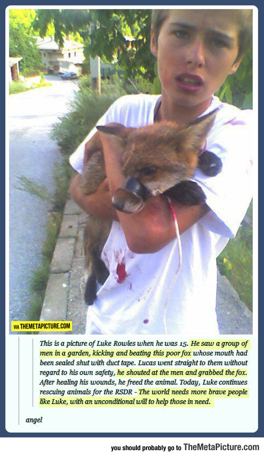 The Child Who Saved A Fox