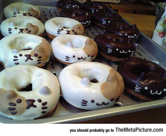 Kitty Donuts Look Delicious