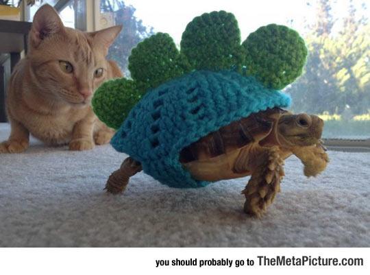 cute-turtle-cat-dinosaur