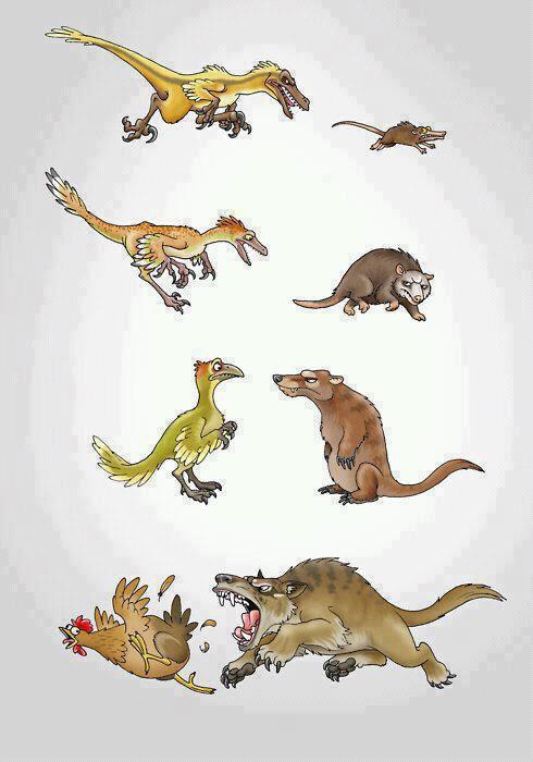 Evolution backfires