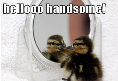 Hellooo there…
