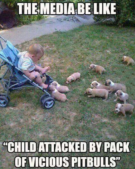 Pack Of Vicious Beasts