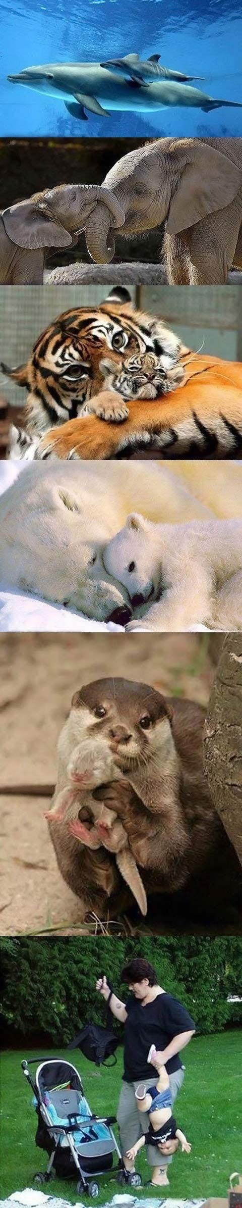 Parenting in nature…