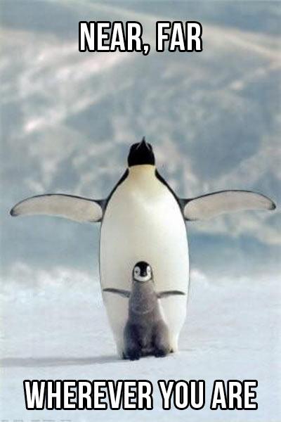 Penguin Titanic