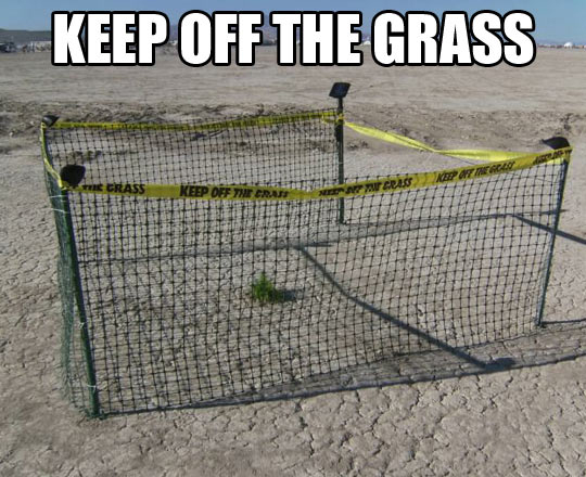 Stay away from the grass