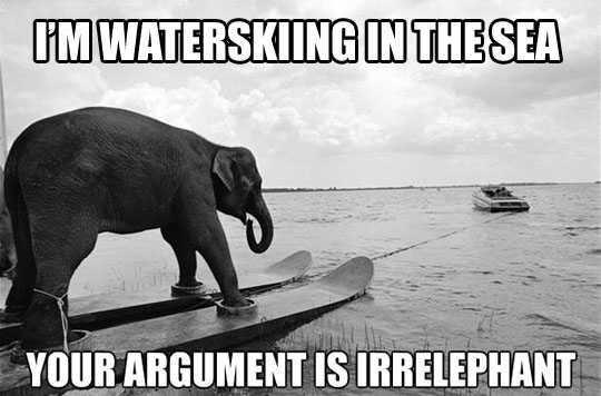 Waterskiing Elephant…