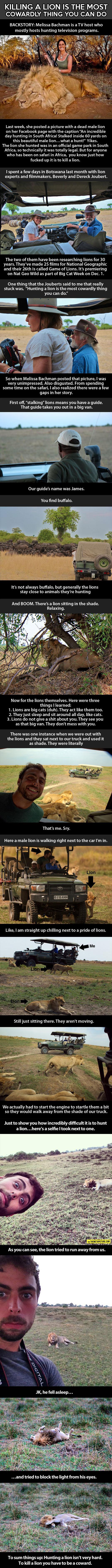 animals-lion-host-hunter-Africa-gun-Bachman