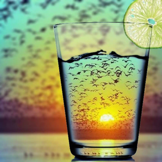 art-glass-water-sunset-birds-lemon-slice