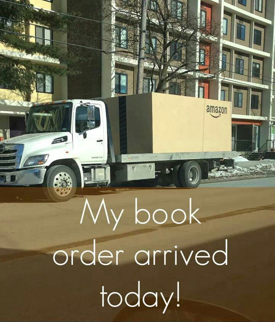 cool-Amazon-order-winter-truck
