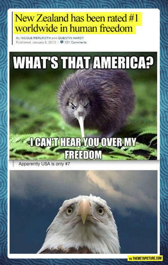 cool-America-freedom-eagle-New-Zealand