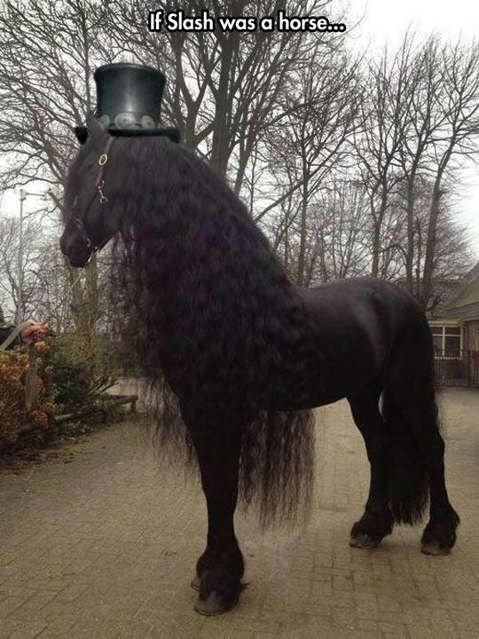 cool-Slash-lookalike-horse-wavy-hair