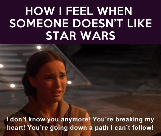 cool-Star-Wars-fans-Amidala-feel