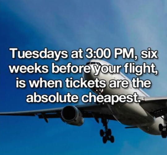 cool-airplane-ticket-price-cheapest