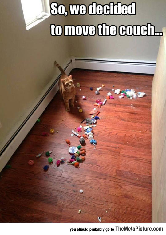 Human, You Found My Stash